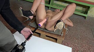 Slave girl Adina Rimers gets her pussy pleasured with a turtle-dove machine